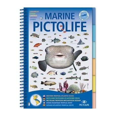 Livre Pictolife Atlantique Tropical Caraïbes