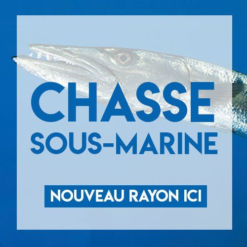 Chasse sous-marine Magasin Nice